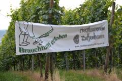 070 Burgholzhofturm